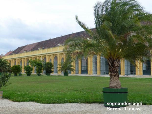 Schönbrunn Orangerie