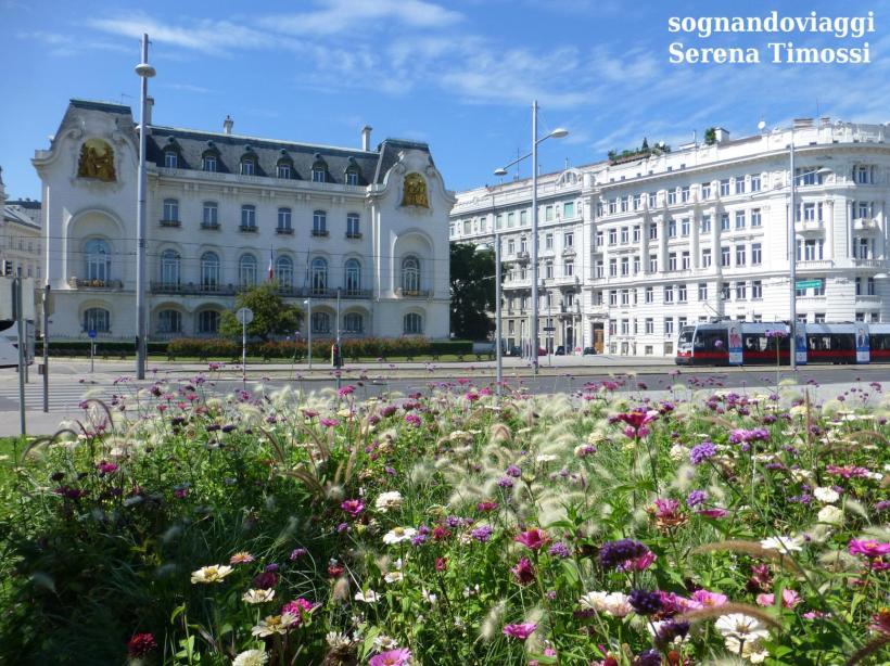 Vienna cosa vedere