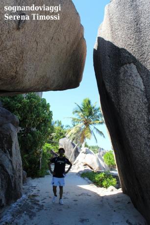 Seychelles - Rocce di granito e palme a La Digue