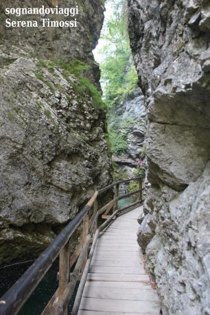 Le pareti del canyon del Vintgar