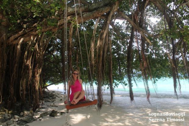 mangrovie maldive fihalhohi