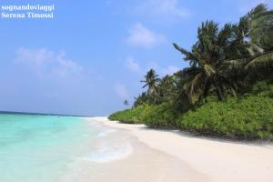 spiaggia fihalhohi maldive