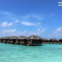 MALDIVE O SEYCHELLES? GUIDA ALLA SCELTA