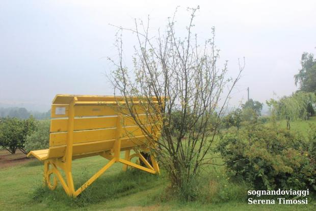 Clavesana panchina gialla