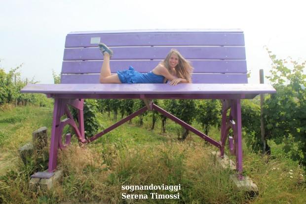 Farigliano panchina viola
