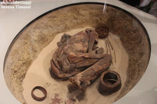 mummia museo egizio