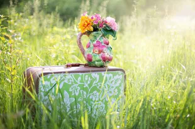 summer countryside grass outdoor